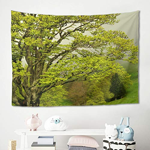 Gamoii Tapiz de pared con árboles verdes, paisaje, paisaje natural, para picnic, playa, esterilla de yoga, multicolor (150 x 150 cm), color blanco