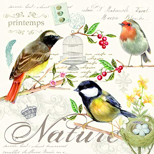 20 servilletas con diseño de pájaros sobre carta vintage como decoración de mesa y para manualidades con decoupage 33 x 33 cm