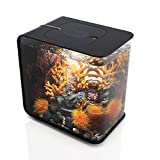 biOrb Flow 15 Aquarium with LED - 4 Gallon, Black