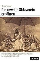 Die »zweite Sklaverei« ernaehren: Sklavenschiffskoeche und Strassenverkaeuferinnen im Suedatlantik (1800-1870)