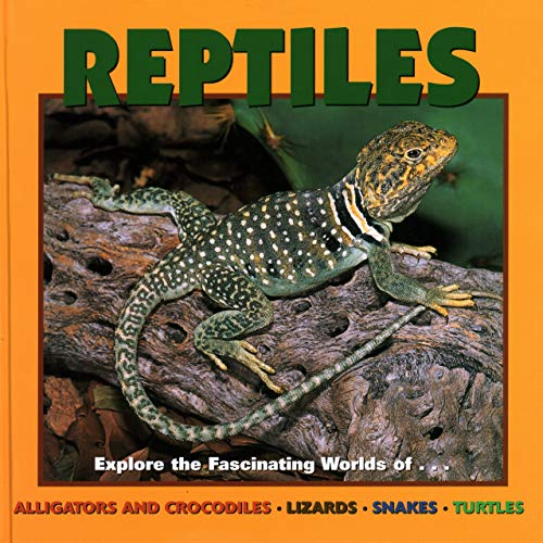 Reptiles: Alligators and Crocodiles, Lizards, Snakes and Turtles (Our Wild World)