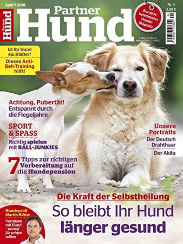 Partner Hund.