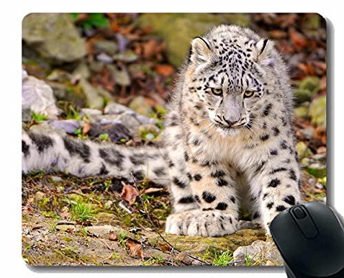 Almohadilla de ratón Original Personalizada, Nieve Leopardo Seda depredador Grande Gato otoño 53046 Alfombrilla de ratón