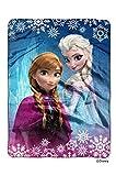 Disney Frozen The Movie - Frozen Land Royal Plush Raschel Throw Blanket