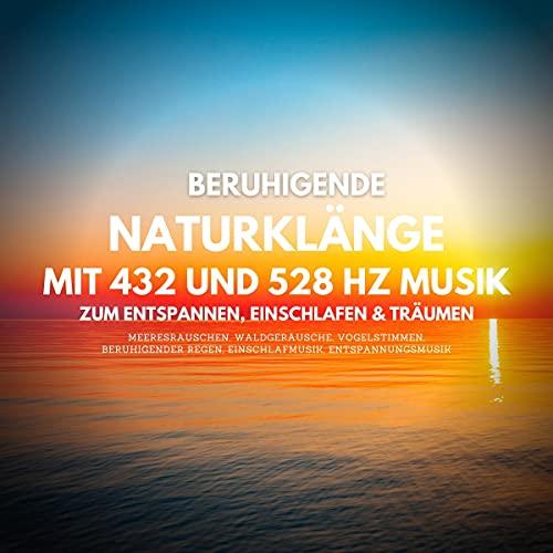 Beruhigende Naturklänge mit 432 und 528 Hz Musik zum Entspannen, Einschlafen und Träumen: Meeresrauschen, Waldgeräusche, Vogelstimmen, beruhigender Regen, Einschlafmusik, Entspannungsmusik