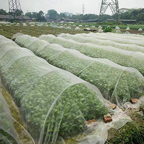 N/U Pflanzennetz, Insektennetz, Fein, 0,8 mm Detail Muster, Verwendet im Garten/Obstgarten, Insektennetz, Vogelnetz (80 Mesh-2,5 * 10 Meter)