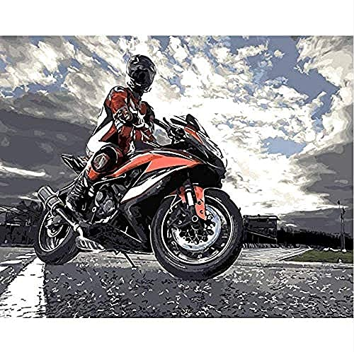 YYTTLL Driver Motorbike Adult Jigsaw Puzzle 1000 Piece Adult Jigsaw Puzzle For Children Home Decoration Educational Game Toy Gift 50X75Cm