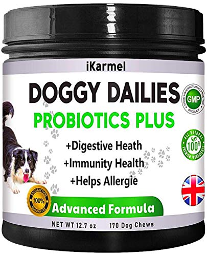 Probiotics For Dogs | Allergy Relief Dog Supplements | 170 Digestive Treats | Immunity Health Treatment | Dog Probiotic | Organic And Natural Treat