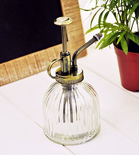 Botella con pulverizador de estilo Vintage de cristal transparente para agua, para plantas, diseño decorativo, con bomba en la parte superior, de e-meoly