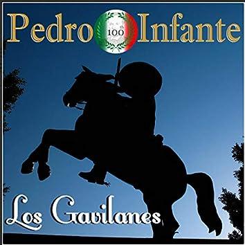 Imprescindibles los Gavilanes