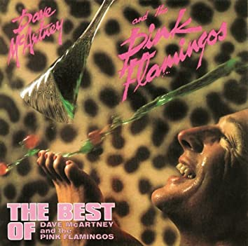 The Best of Dave McArtney and The Pink Flamingos