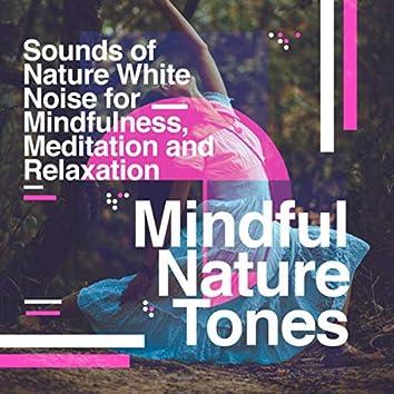 Mindful Nature Tones