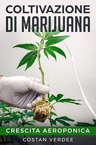 Coltivazione Di Marijuana: Crescita Aeroponica