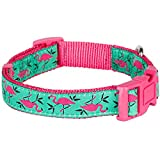 Blueberry Pet Hundehalsband Pink Flamingo auf Hell-Smaragtgrün 1,5 cm S Basic Polyester Nylon Hundehalsband - 4