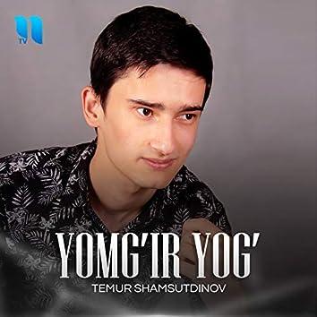 Yomg'ir Yog'