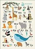 Poster 30 x 40 cm: Das Tieralphabet von Sandy Lohß -