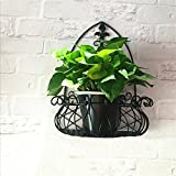 LQQGXL Iron living room wall frame flower balcony balcony flower pots frame decorative frame Flower stand ( Size : 352043cm )