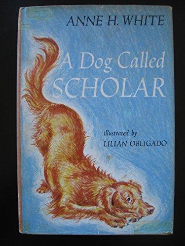 A Dog Called Scholar