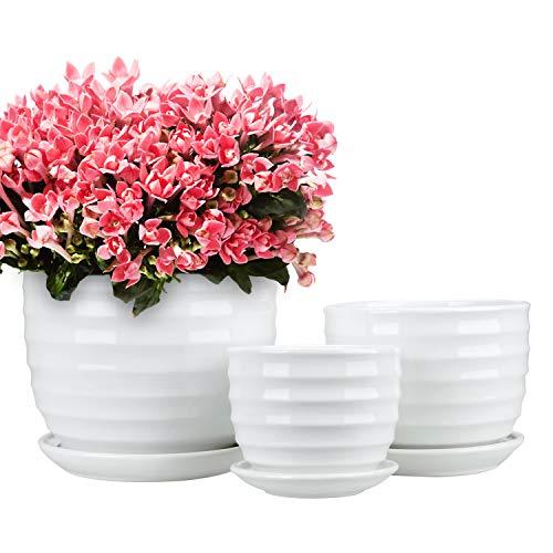 Encheng Round Modern Ceramic Garden Flower Pots Small to Medium Sized,White Planter...