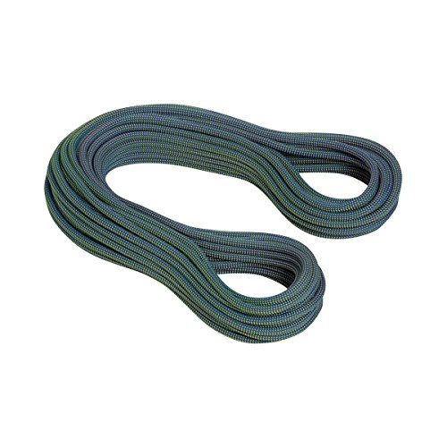 Mammut 10.0 Galaxy Dry Dry - Cuerda Simple, Unisex Adulto, Morado(Standard.Violet-Lime Green)