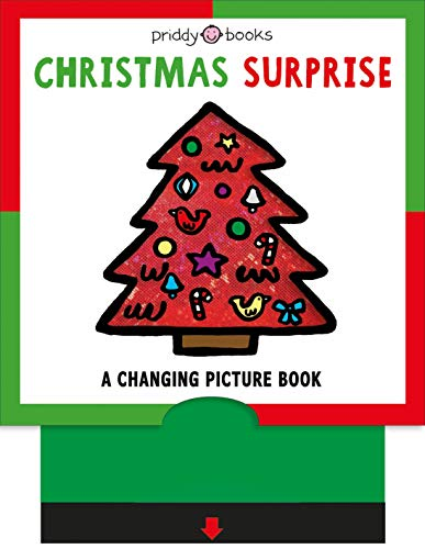 A Changing Picture Book: Christmas Surprise