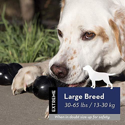 KONG – Extreme Goodie Bone – Robuster Kautschukknochen für Kräftiges Kauen, Schwarz – Für Große Hunde