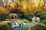 Fotomurales 3D Papel Pintado Pared Otoño Bosque Río Agua Animales Elefante...