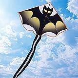 Cometa voladora para niños, niñas, adultos, principiantes, parque de playa, juegos al ai...