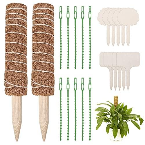 2 Pezzi Bastone Fibra di Cocco, 10 Legami Morbidi pianta, 10 Etichette per Piante,per Piante Totem di Cocco Bastoncino di Muschio di Cocco
