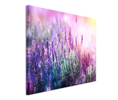 Bestforhome GmbH Modernes Bild 120x80cm Naturfotografie – Blühender Lavendel in der Sonne
