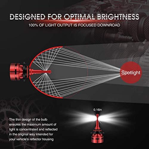 Torchbeam LED Headlight Bulb