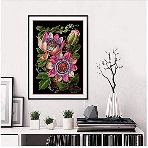 Canvas print,Antieke Victoriaanse Botanische Canvaskunst Poster Passiebloem illustratie zwarte achtergrond schilderij Foto Home Wall Decor-50x70cm