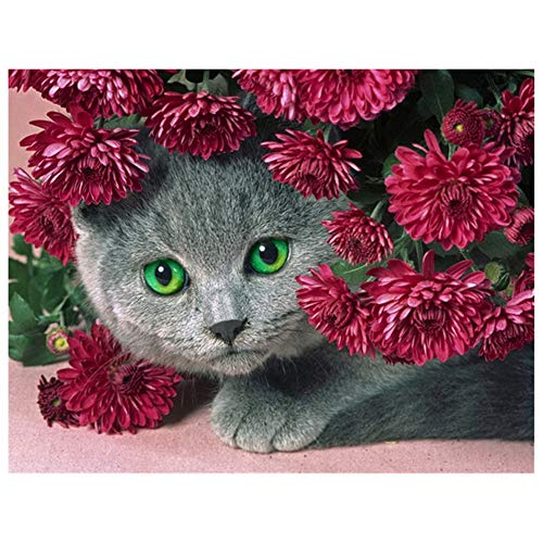 5D DIY Diamond Painting by Number Kit Flower Cat Square Drill,70x50cm Adults and Kids Full Drill Beads Crystal Rhinestone Embroidery Cross Stitch Picture Supplies Arts Craft for Home Wall Decor U4187