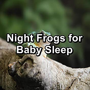 Night Frogs for Baby Sleep
