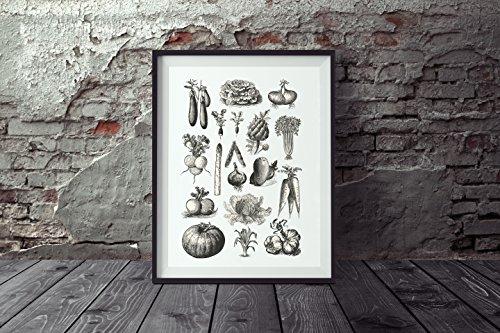 Nastami Poster Gemüse DIN A3, Poster Küche, Wandbild Gemüse, Poster Vintage, Küchenposter