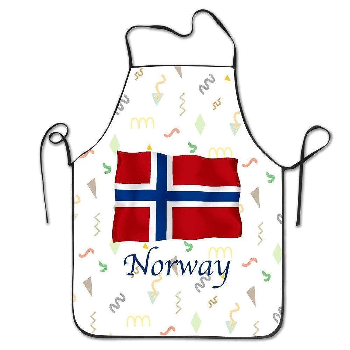 豪華なバンジョー海里面白いデザインエプロンの旗ノルウェー国旗ヴィンテージ防水クリエイティブ用女性男性ウェイトレスシェフホーム理髪師キッチンガーデニング