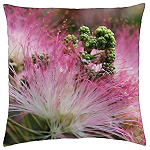 LESGAULEST Throw Pillow Cover (24×24 inch) – Flower Pink Blossom Mimosa Silk Summer Nature
