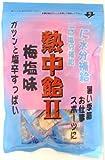 井関食品 熱中飴II 梅塩味 100g×10袋