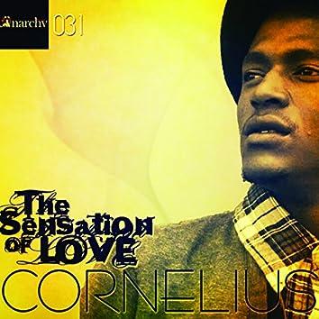 The Sensation of Love