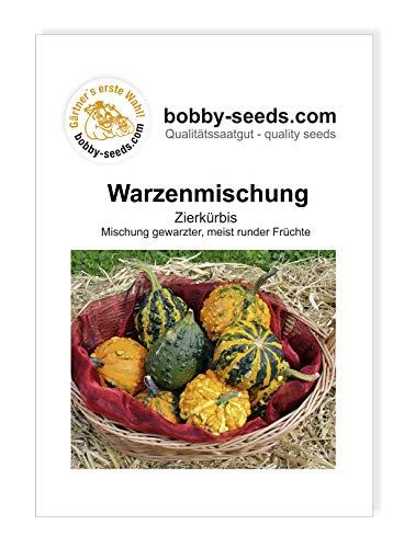 Warzenmischung Zierkürbis von Bobby-Seeds, Portion