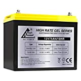 ExpertPower 12V 75AH Gel Deep Cycle Battery Replaces BCI Group 24M Starting Marine & RV