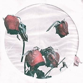 Молодость пахнет розами - Single