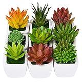CHICHIC Set of 9 Mini Assorted Artificial Succulent Plants, Decorative Faux Succulents, Small Fake Plants for Decoration, Potted Fake Succulents with Ceramic Pots, Fake Aloe Cactus Cacti with Planters