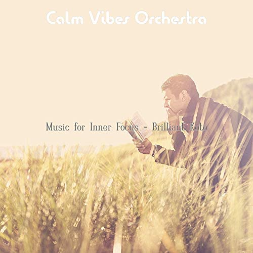 Calm Vibes Orchestra