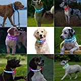 Zoom IMG-2 plartree collare per cani led