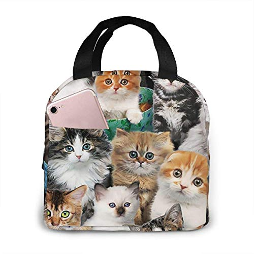 Jingliwang Cat Breeds Packed Cats Insulated Lunch Bag For Men Women Splash Proof Portable Reusable Thermal Lunch Box Cooler Tote For Travel Picnic Work School