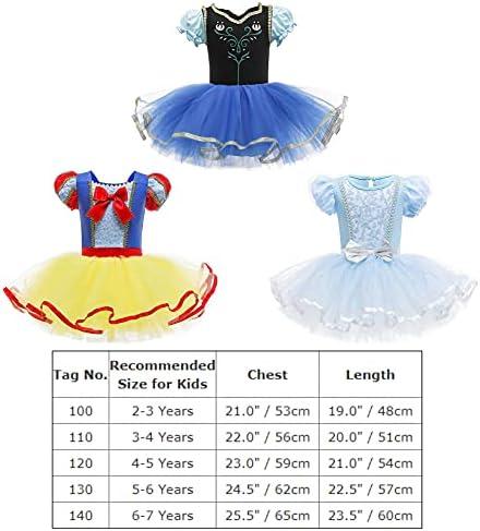 Cinderella dance costume _image0