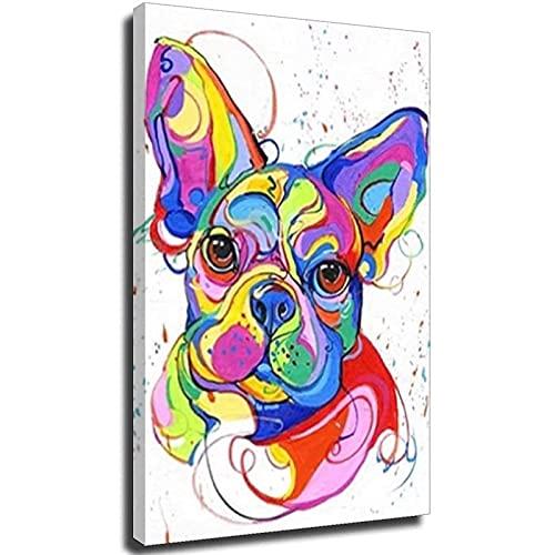 Xykhlj Animal de Color Bulldog_DIY Pintura al óleo de por Números-Lienzo preimpreso-óleo Regalo para Adultos Niños Pintura por Numero Kits Decoración del Hogar_30x40cm Sin Marco