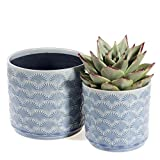 Medium Plant Pots