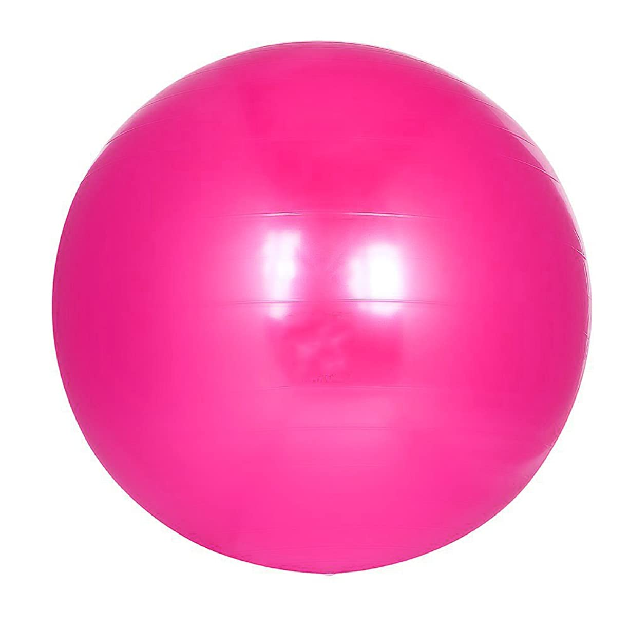 混乱させる誤統合するバランスボール 65CM/55CM アンチバースト仕様 3色 フットポンプ付き! エクササイズボール ヨガボール